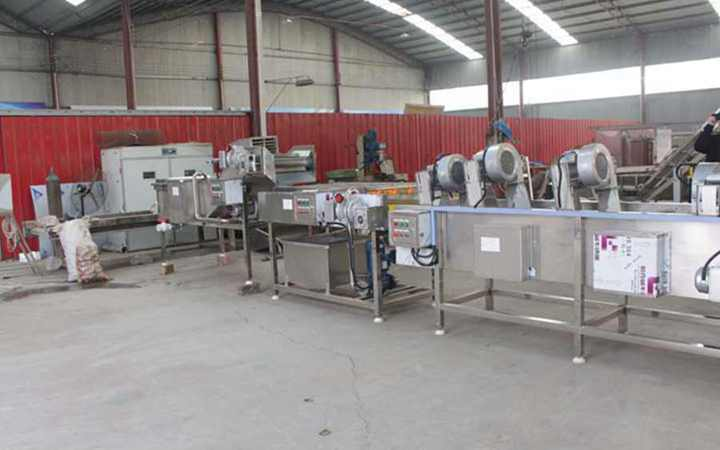 Vegetable fruit dryer in the production line