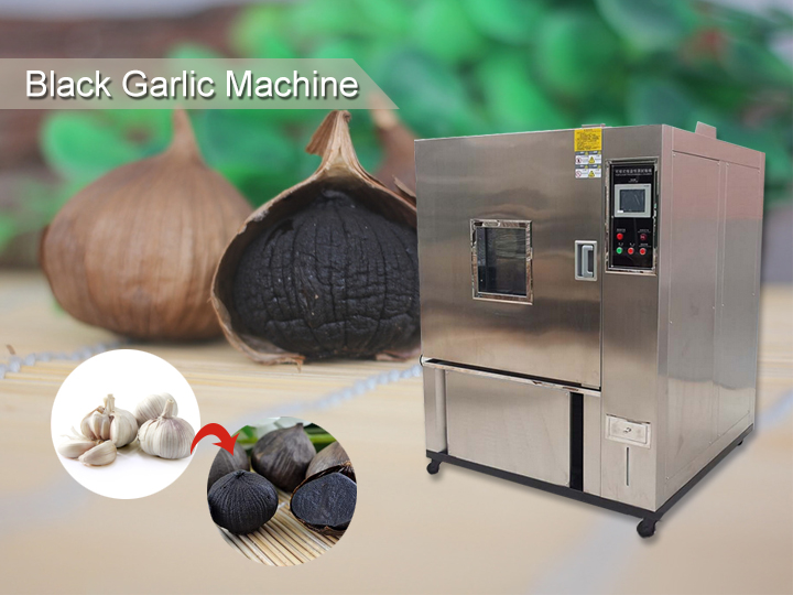Black garlic maker