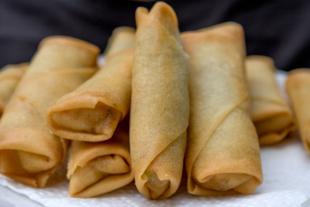 spring roll products1