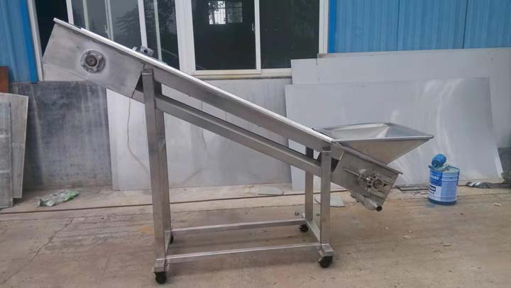 supporting conveyor for grape destemming