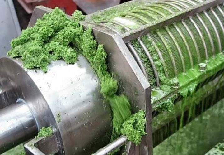 vegetable juicer machine