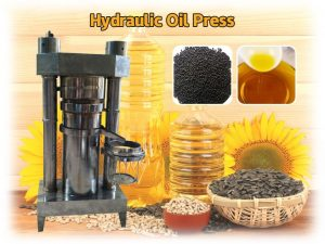 oil press machine for sale