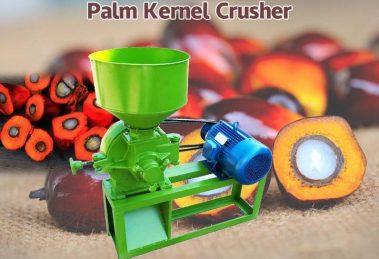 palm kernel crusher