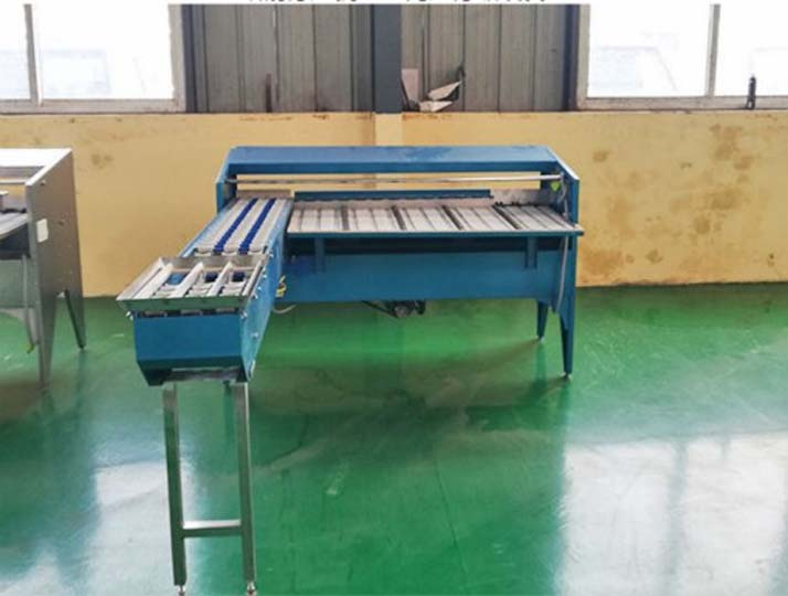 egg grading equipment in stock