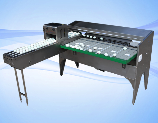 egg sorting machine structure