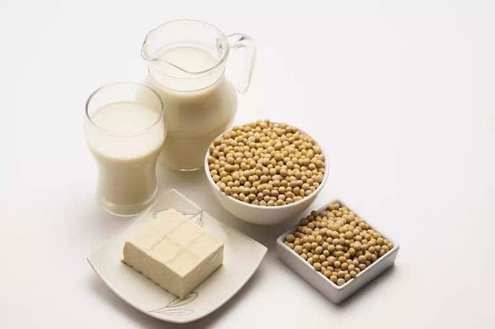 soymilk and tofu making