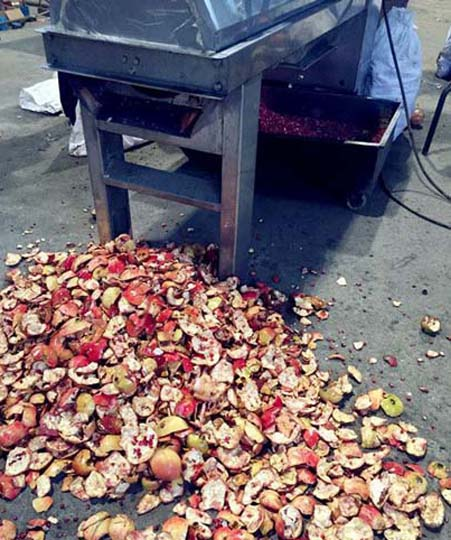 Pomegranate processing