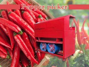 pepper picker (2)