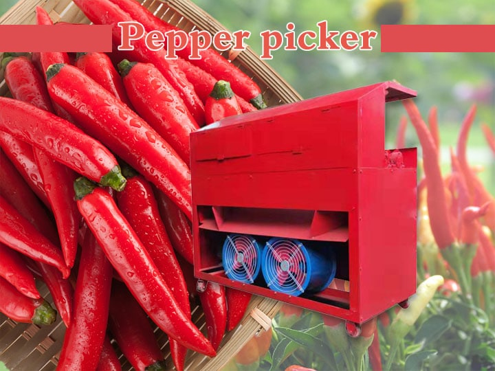 pepper picker (2)