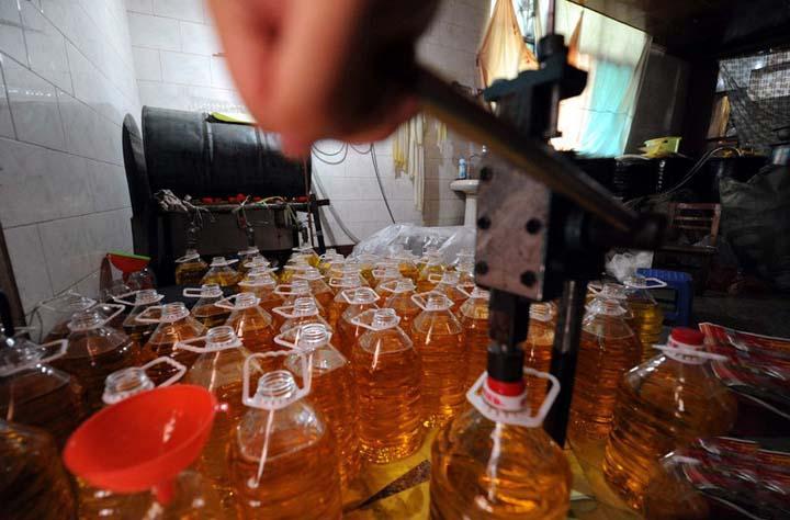 oil press production plant