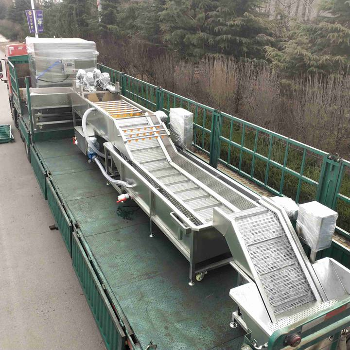 automatic potato washing line for shipping to UAE