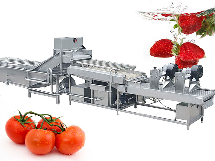 tomato & strawberry washing and drying line