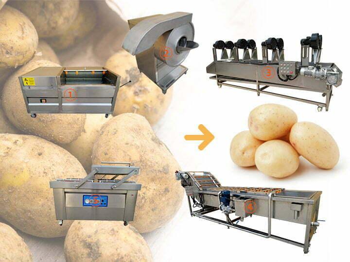 potato washing plant