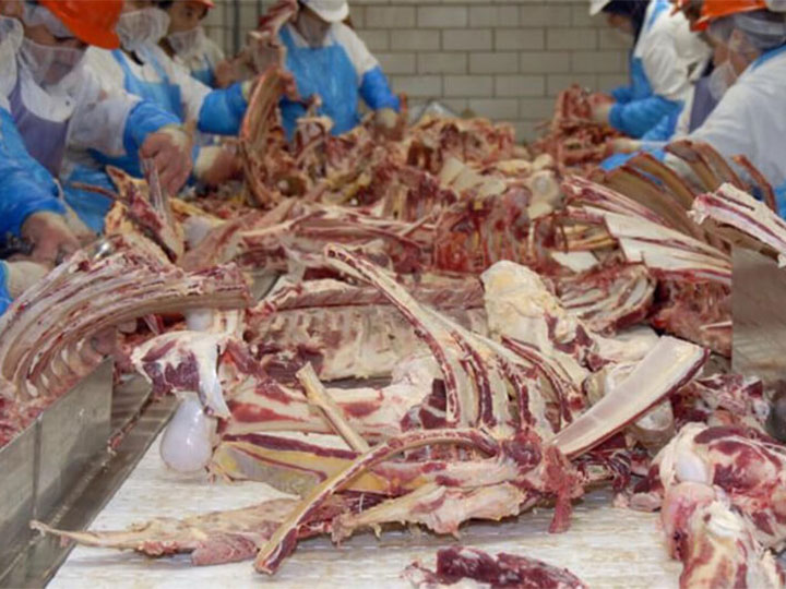 animal bones for recycling