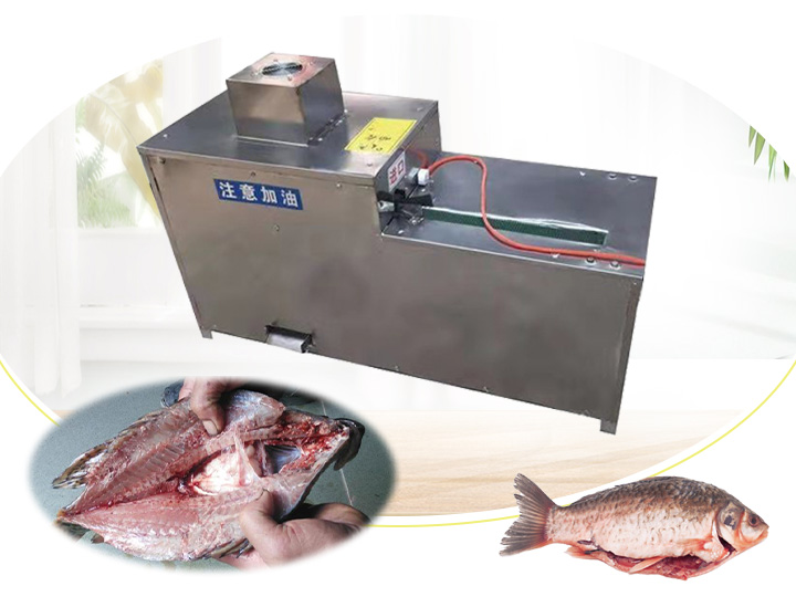 fish gutting machine for sale