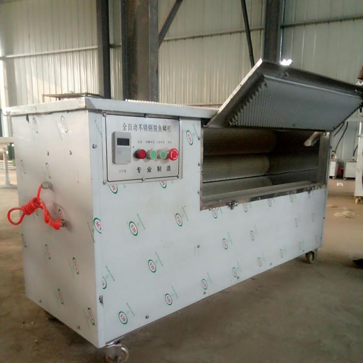 fish scaling machine manufacturer