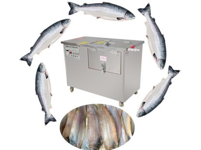 industrial fish scaling machine for sale