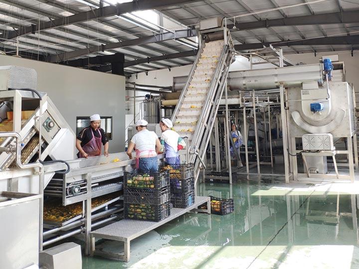 large mango juice processing plant